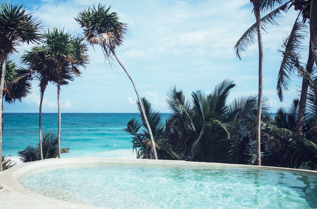 Papaya Playa Project