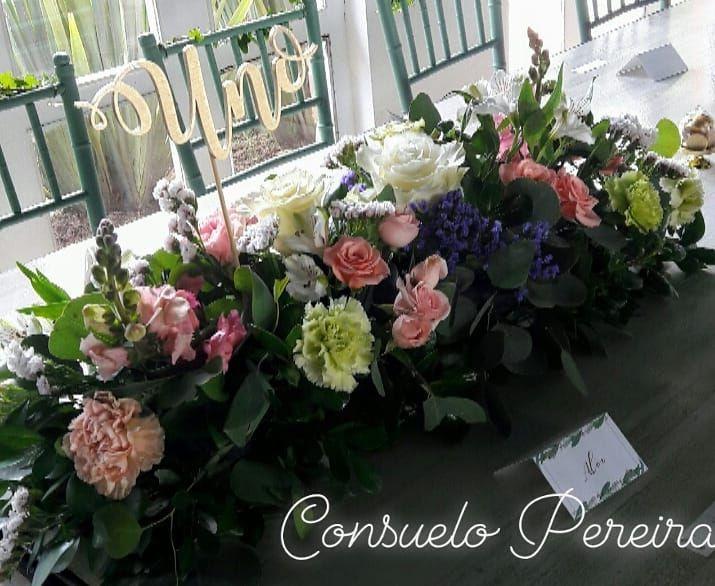 Consuelo Pereira