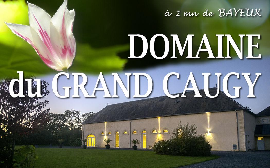 Domaine du Grand Caugy