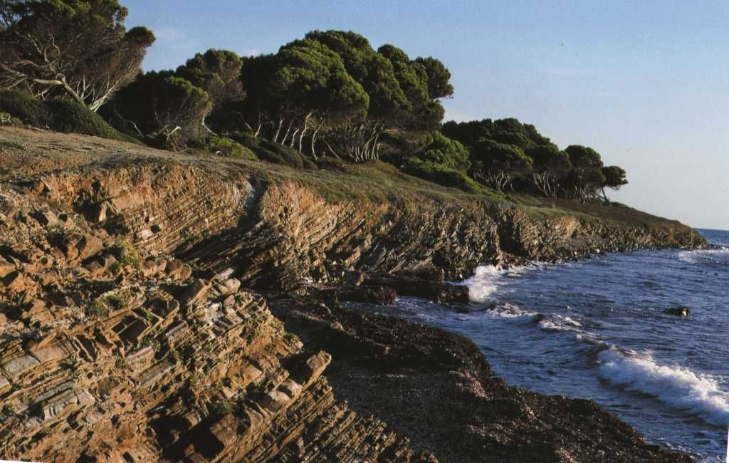 Coastline of Punta Licosa