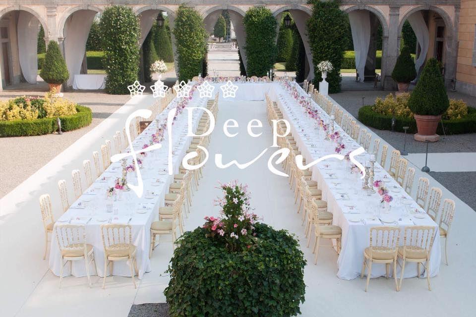 Deep Flowers