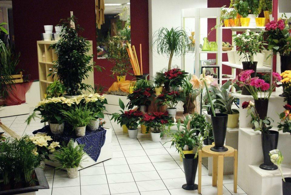 Beispiel: Impressionen aus dem Blumenfachgeschäft, Foto: Blumenwerk Saarbrücken.