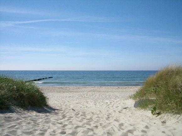 Beispiel: Umgebung - Strand, Foto: Landhotel Ostseetraum.