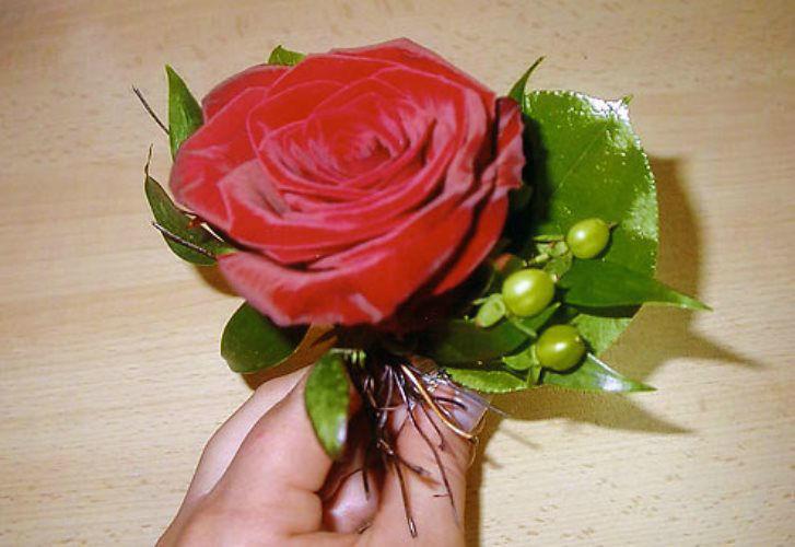 Beispiel: Anstecker für den Bräutigam, Foto: AFLORA – Blumenfachgeschäft.