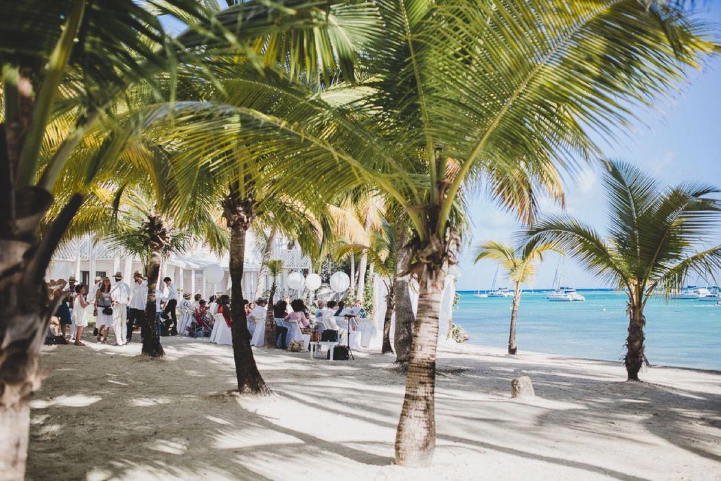 Caribbean Planner
