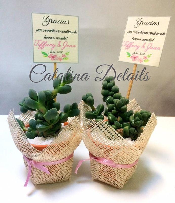 Catalina Details
