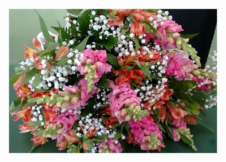 Floricultura D+F. Fernanda Silvestre