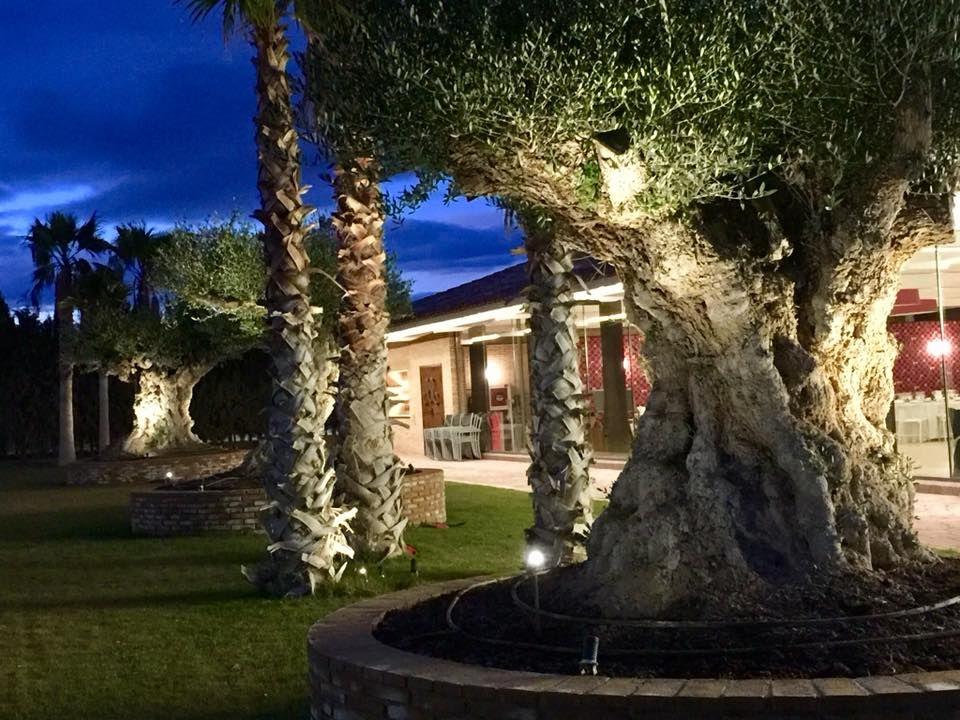 Jardines del Monasterio