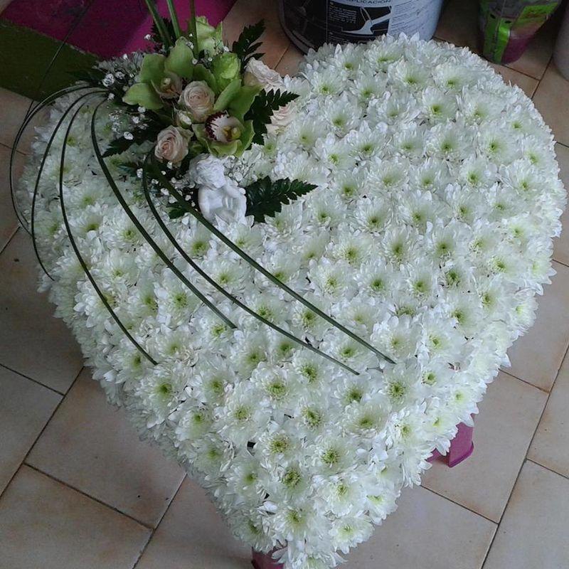 Florista Flor do Criz - Paula Pereira