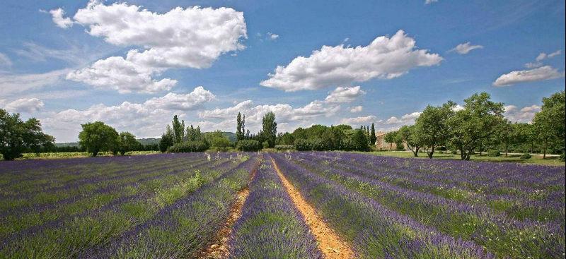 Beispiel: Frankreich, Foto: itravel.