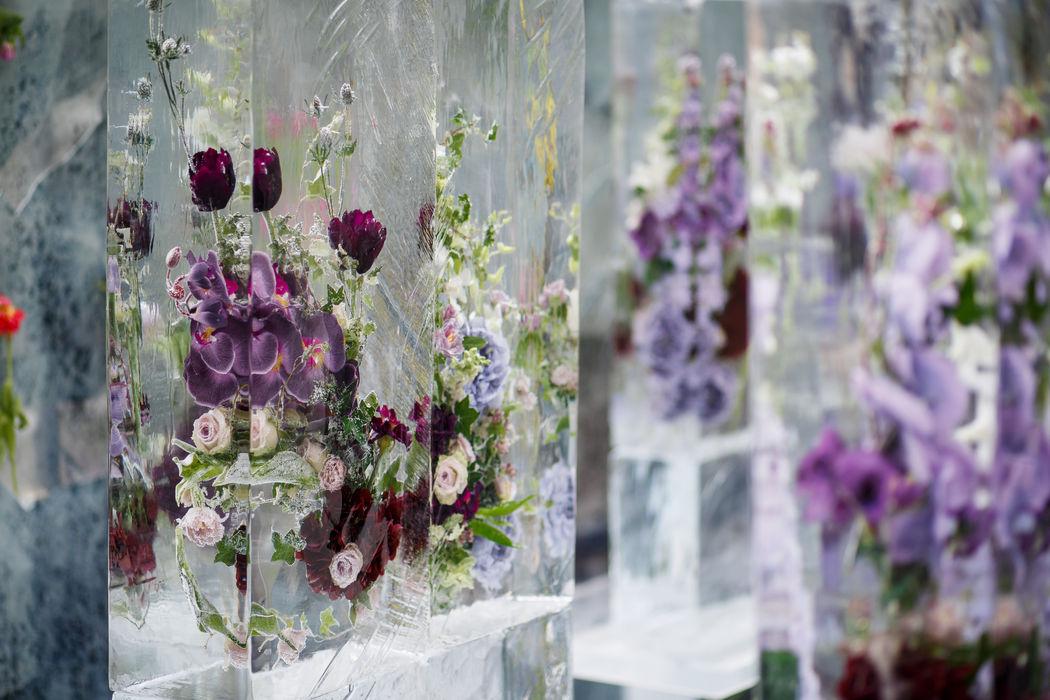 Вмороженные живые цветы для зоны церемонии