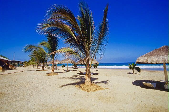 Hotel Karibian Punta Sal