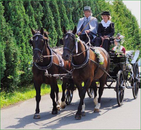 Beispiel: Hochzeitskutsche, Foto: Hotel Schöne Aussicht.