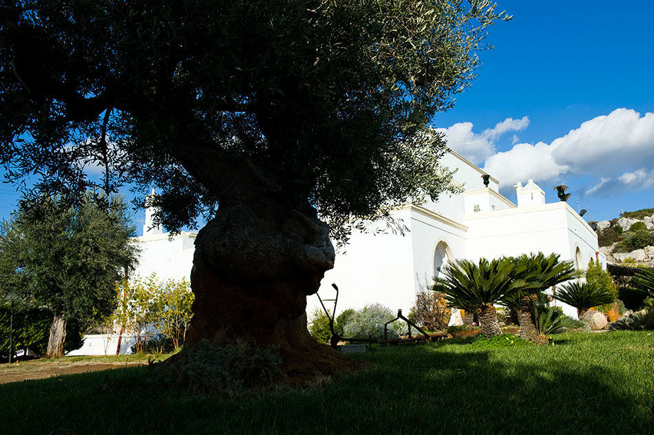 Masseria Appia Antica