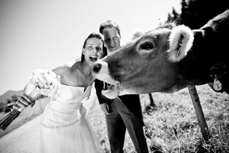 Beispiel: Hochzeitsfotos mit Witz, Foto: Dennis Jagusiak.