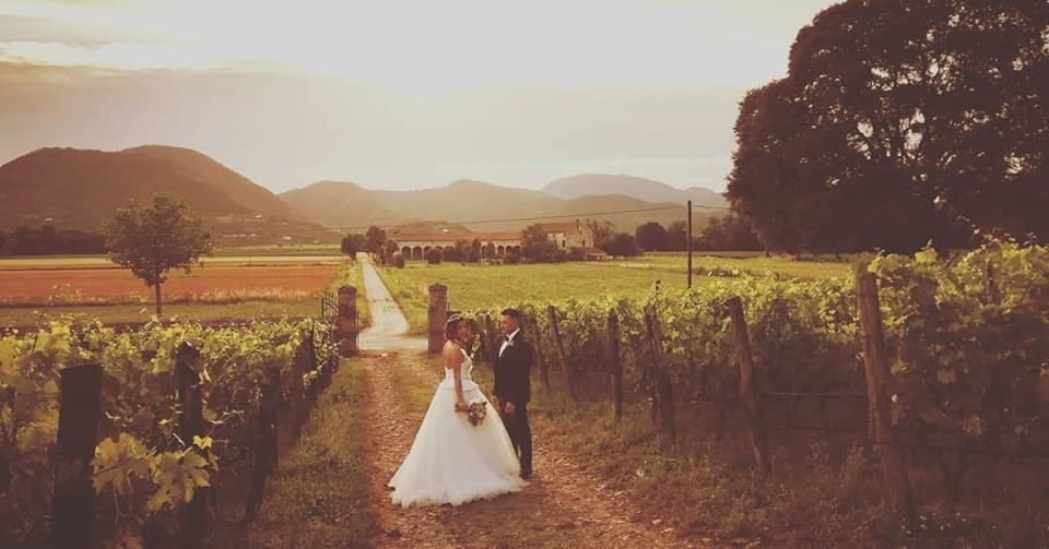 Whitesfilm - Wedding Videography