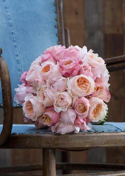 A Nova Flor - Florista Decoradora
