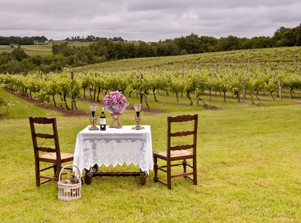 La Véranda du Château Maison Noble, vue sur nos vignes