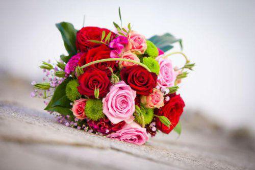 Stiel und Blüte