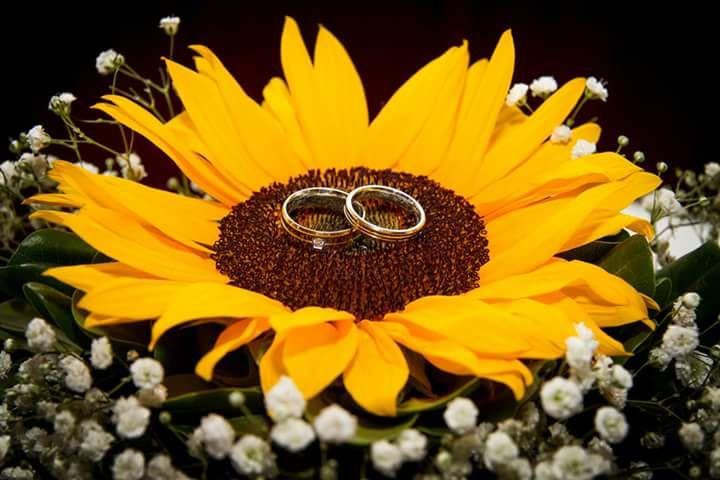 Matrimonio de Jaqueline y Jose La Florida