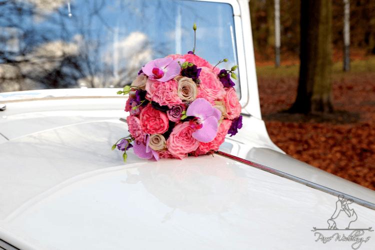 Pars Weddings