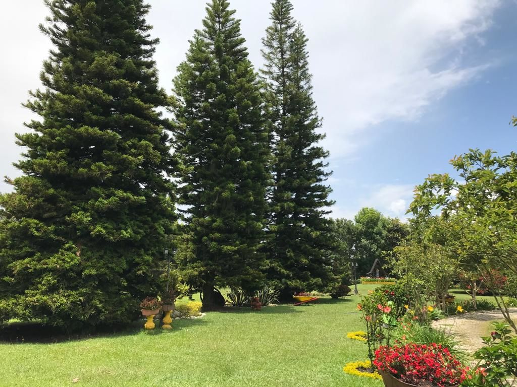 Finca Villa Natalia