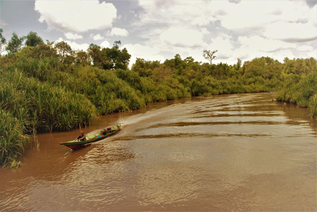Aventura en Borneo
