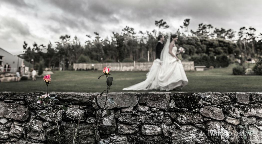 Antonio Amboade Fotografía