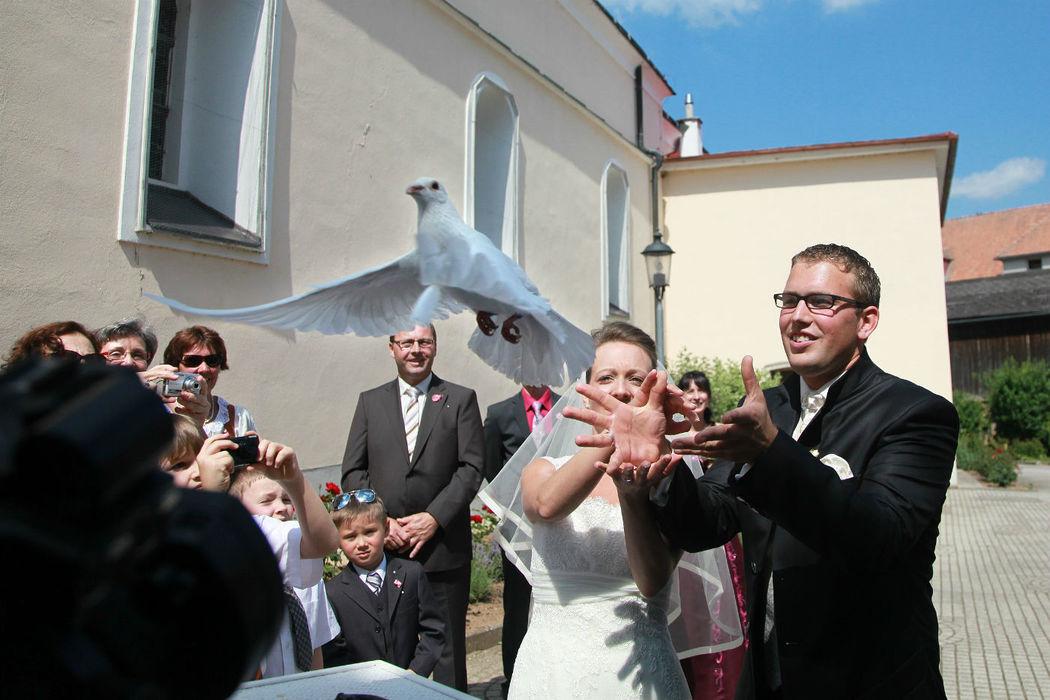 Beispiel: Beeindrucken Sie die Hochzeitsgesellschaft, Foto: Weisse Tauben.