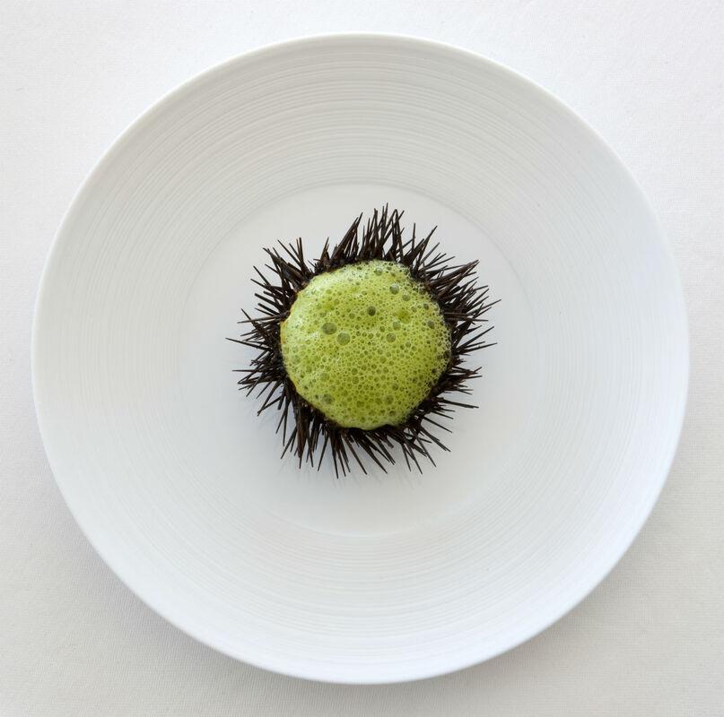 Oursin, crème de safran, espuma de coriandre