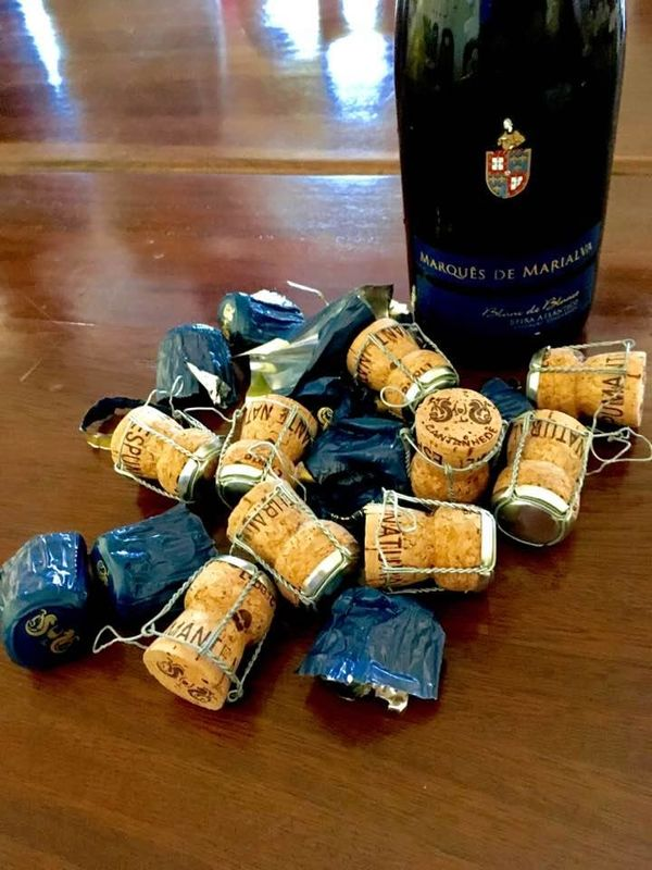 Adega de Cantanhede - Vinhos