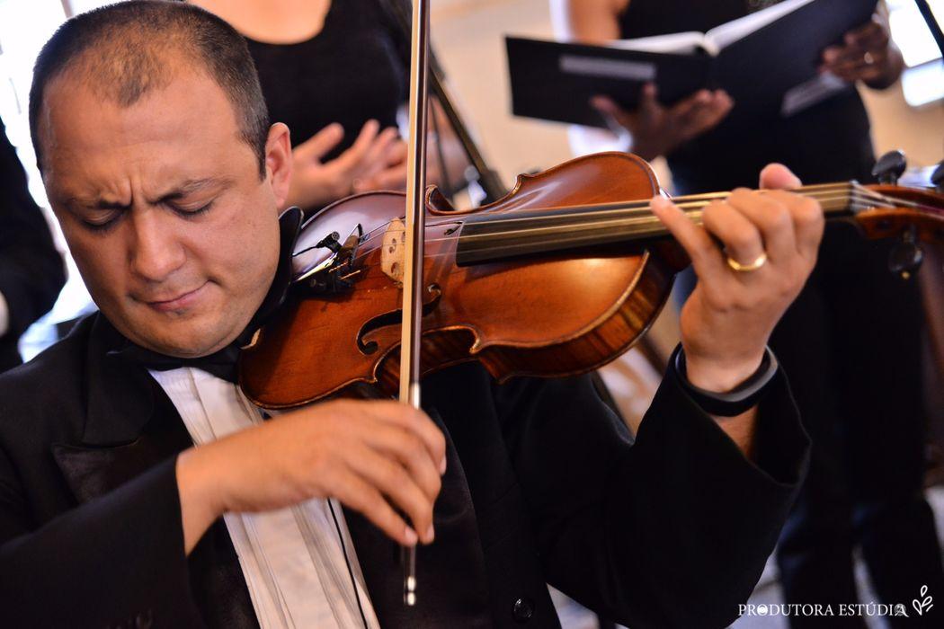Violinos, Viola, Violoncelo - Cordas