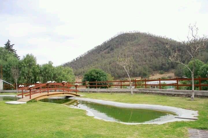 Moezllonz Jardín