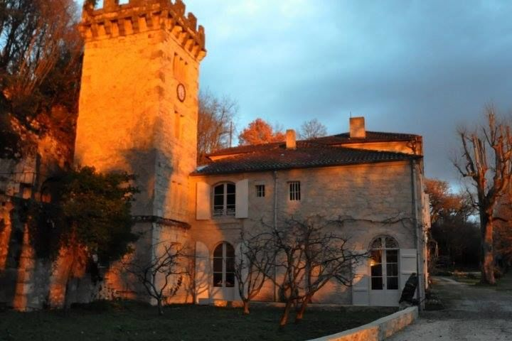 Chateau de Cambes