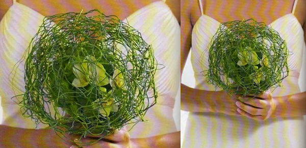 Ramo de nido vegetal , con orquidea phanelopsis blanca.  http://lafloreria.net