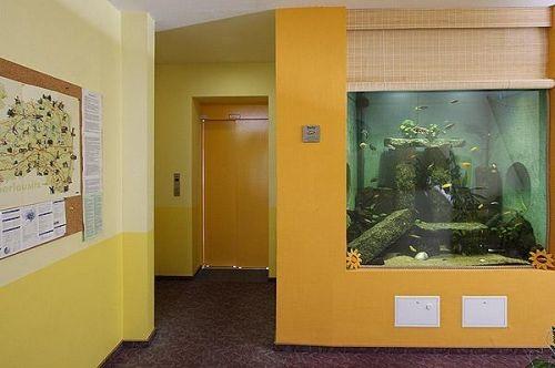 Beispiel: Aqurium, Foto: AKZENT Hotel Am Husarenhof.