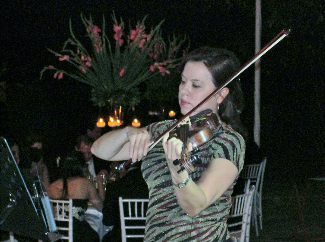 """Violin """"EnCanto"""""""