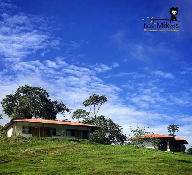 EcoHotel Los Mikos