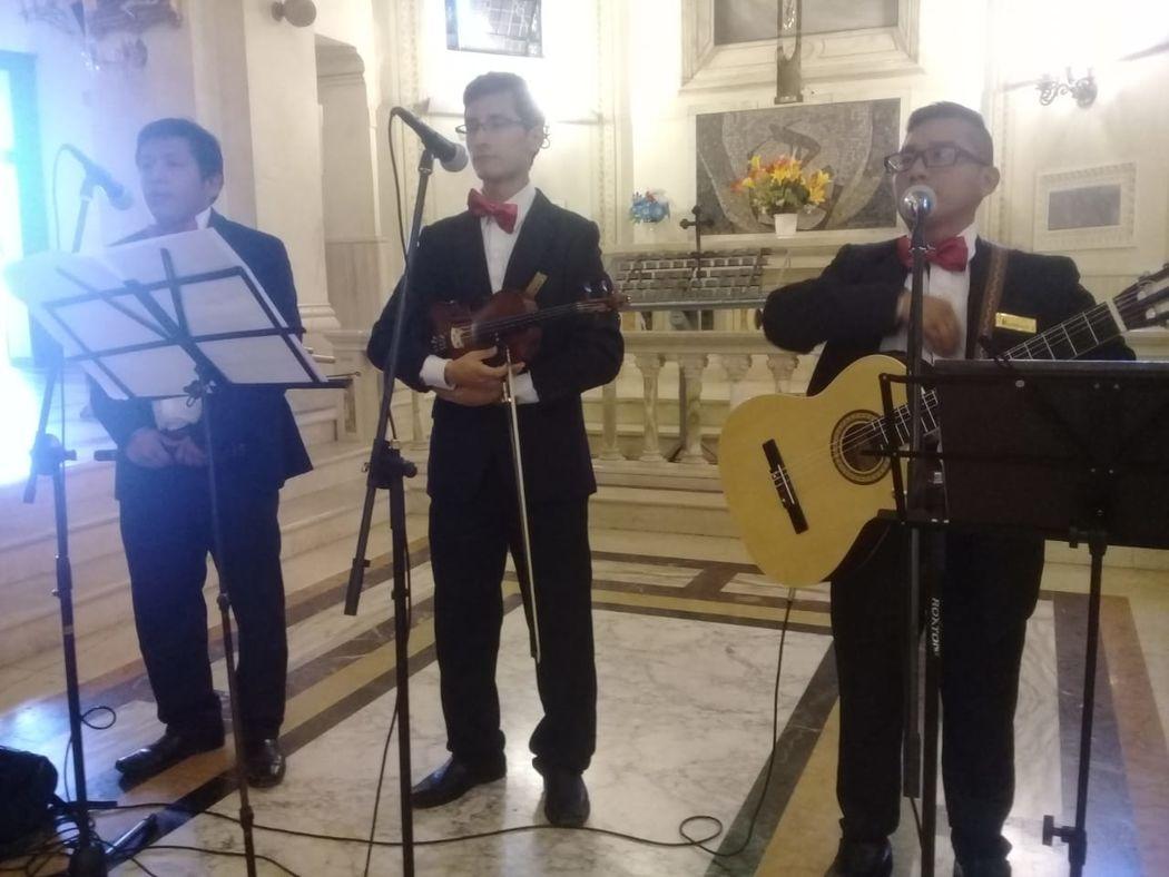 Coro Voz Andino Premium