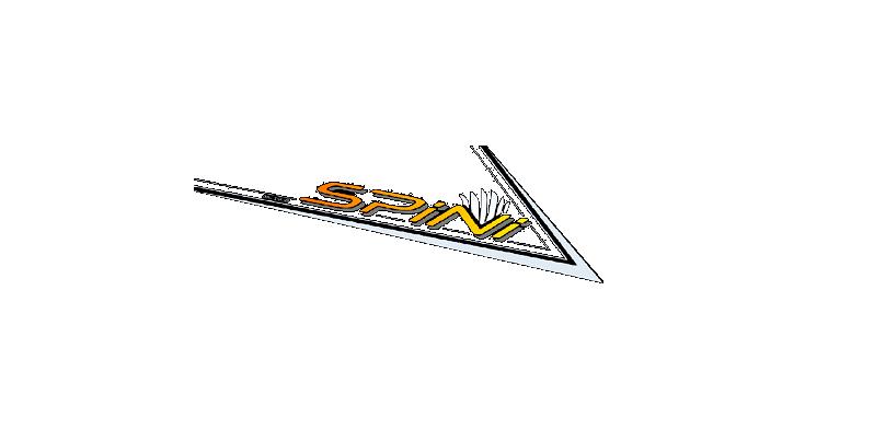 Autoservizi Spini