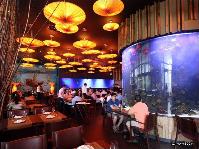 Costamía Restaurante Aquarium