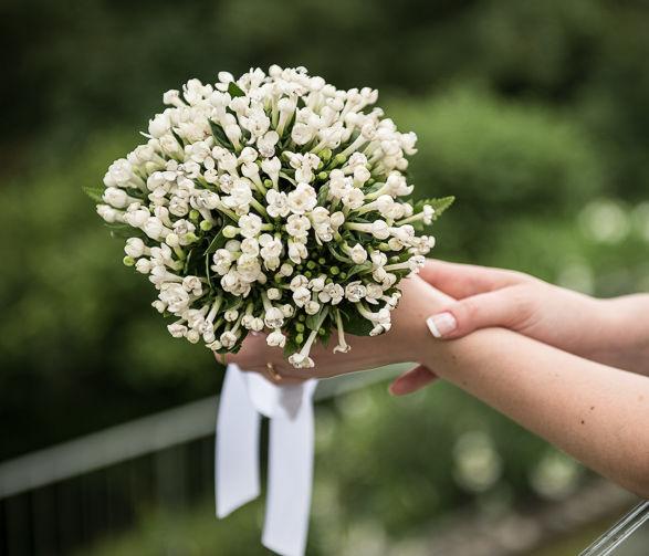 Bouquet di bovardia