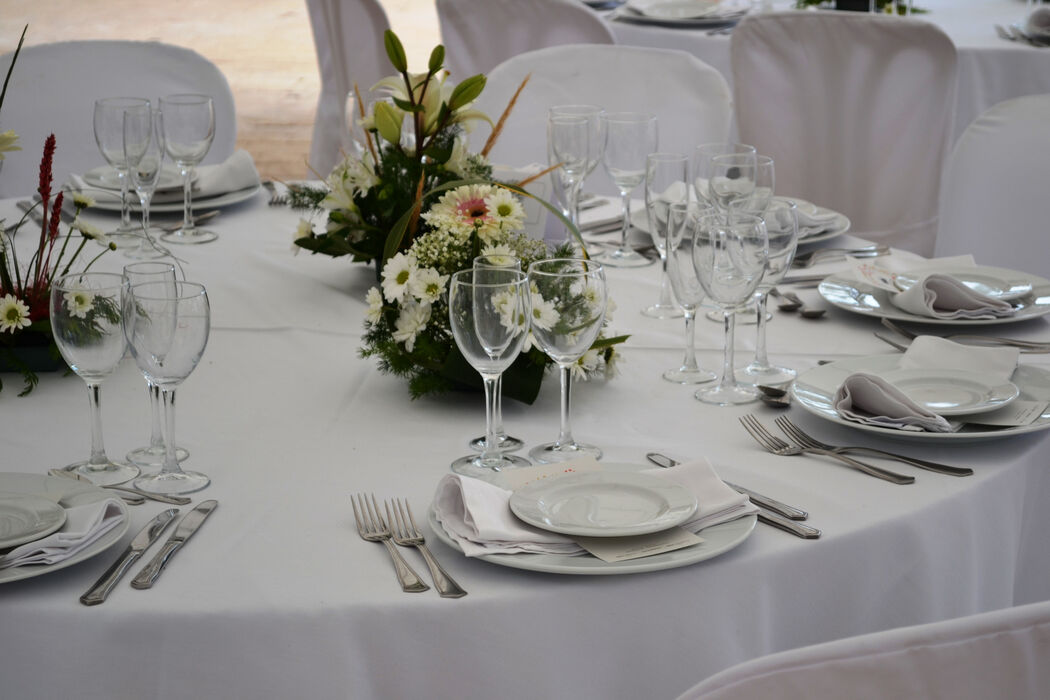 Catering D'Gusto