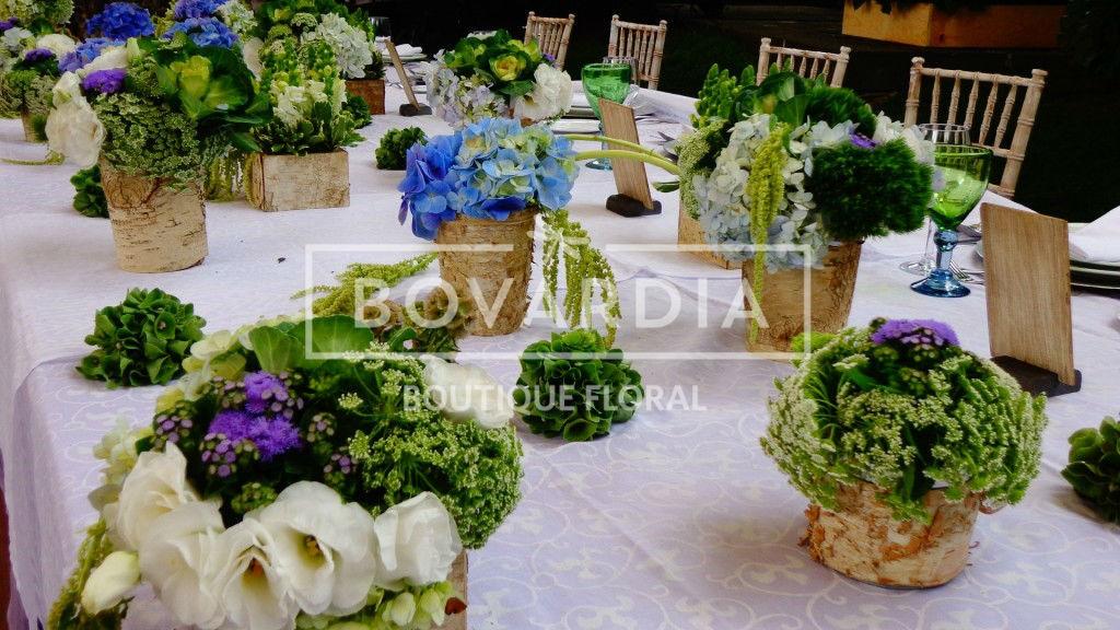Bovardia - Boutique Floral