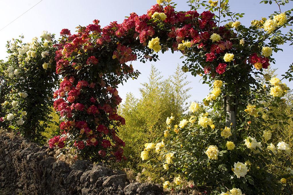 I Giardini di Villa Fago