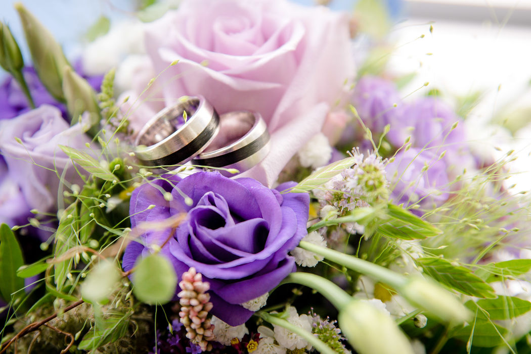 Hochzeits-Ringe in Violetten Strauss