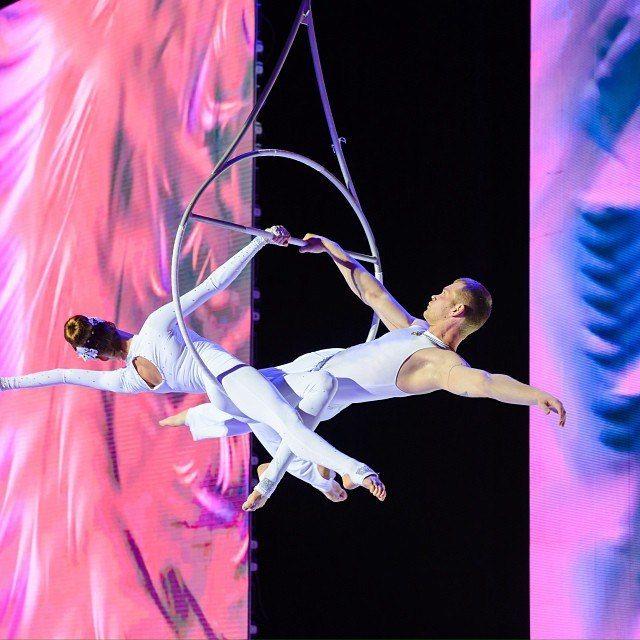 ColorPeople plus - воздушные гимнасты