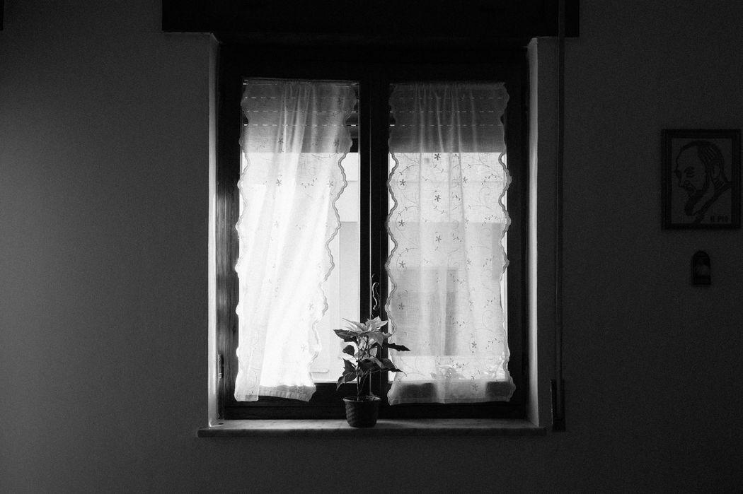 Manuela Susanna Handmade Photography