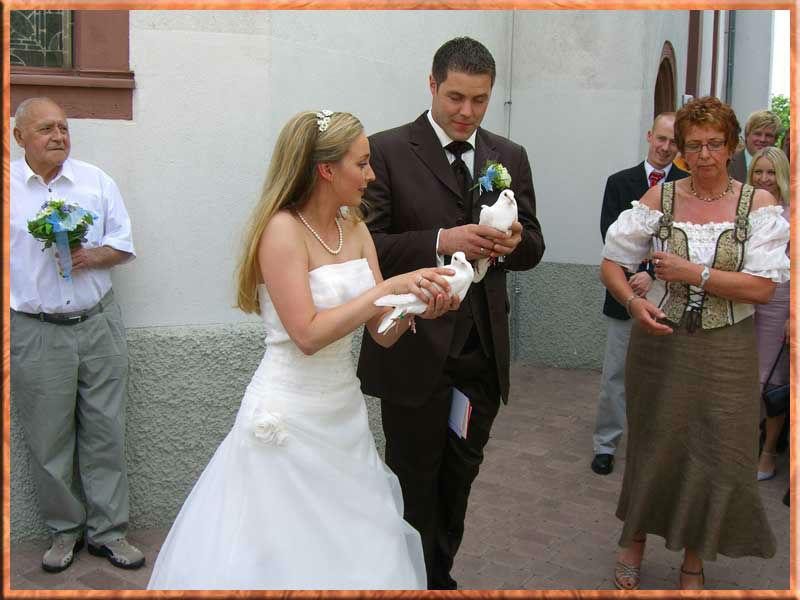 Hochzeitstauben - Service - Bergstrasse
