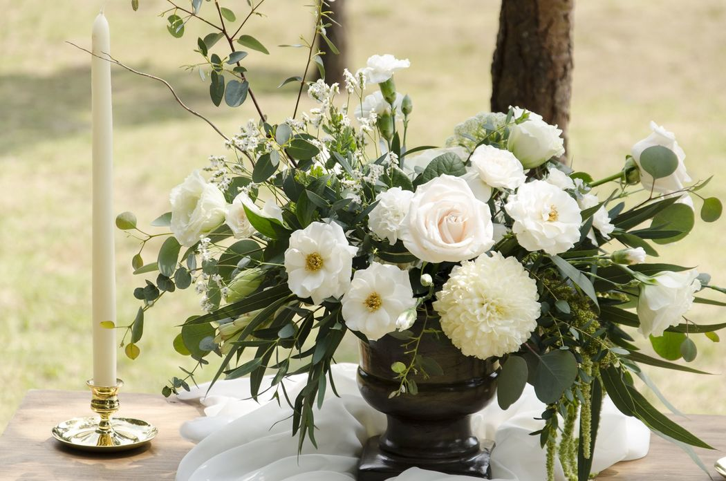 Prunier - Les artistes des fleurs
